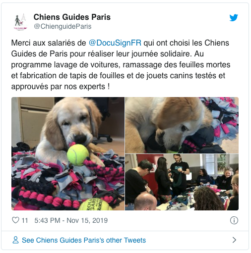 Global Impact Day 2019 - Chiens guides de Paris